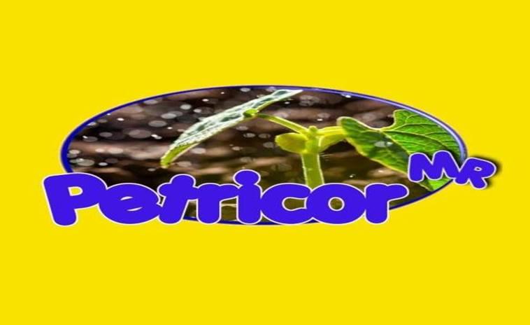 Petricor SOS PyMEs